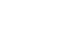 noble sky international logo